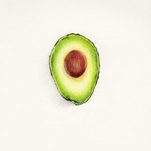 """Avocado Pit"" - Daily Drawing #117"